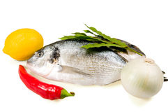 Pesci e verdure Fotografia Stock