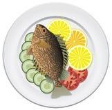 Pesci e verdure illustrazione di stock
