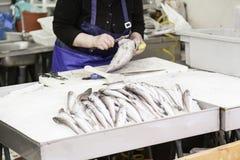 Pesci freschi ad un servizio Immagini Stock