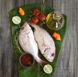 Pesci freschi con le verdure Fotografie Stock Libere da Diritti