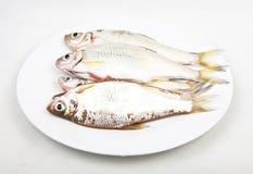 Pesci freschi in piatto bianco Immagini Stock
