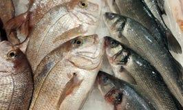 Pesci freschi su ghiaccio da vendere fotografia stock libera da diritti
