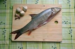 Pesci freschi sulla tabella Immagine Stock