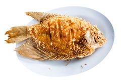 Pesci fritti Immagini Stock Libere da Diritti