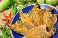 Pesci fritti con piccante tailandese Immagine Stock Libera da Diritti