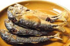 Pesci fritti dello scombro Fotografia Stock Libera da Diritti