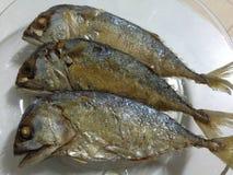 Pesci fritti nel grasso bollente Fotografia Stock Libera da Diritti