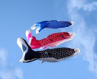 Pesci giapponesi Fotografia Stock Libera da Diritti