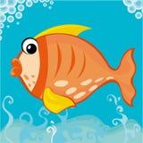 Pesci grassi Fotografia Stock