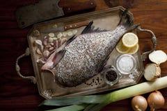 Pesci grezzi freschi Fotografie Stock Libere da Diritti