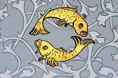 Pesci il segno dello zodiaco del pesce Fotografia Stock