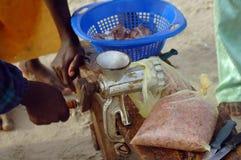 Pesci mincing della mano in Africa Immagini Stock Libere da Diritti