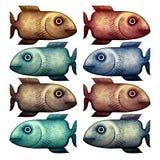 Pesci nei colori differenti Immagine Stock
