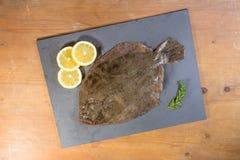 Pesci piatti di Brill presentati su un'ardesia Fotografie Stock