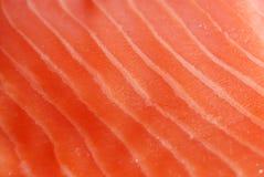 Pesci rossi Fotografie Stock Libere da Diritti
