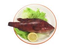 Pesci rossi Immagini Stock