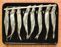 Pesci secchi del Hokaido Immagini Stock