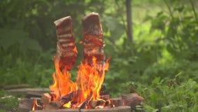 Pesci sul fuoco video d archivio