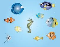 Pesci tropicali del fumetto Fotografia Stock Libera da Diritti