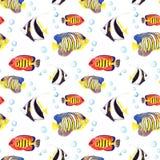 Pesci tropicali Ripetizione del modello senza cuciture watercolor illustrazione di stock