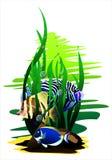 Pesci tropicali (Vettore) Illustrazione di Stock