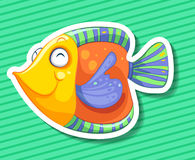 Pesci variopinti Immagini Stock