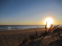 Pescoluse海滩 免版税库存图片