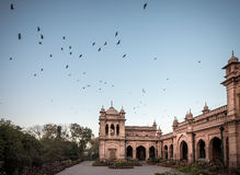 Peshawar Pakistan Royaltyfria Bilder