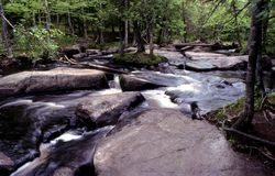 Peshtigo river Royalty Free Stock Images
