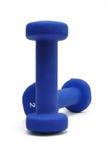 Pesi blu Immagini Stock