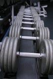 Pesi di Dumbbell in ginnastica Fotografia Stock