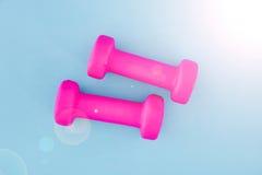 Peso cor-de-rosa do Gym Imagem de Stock