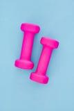 Peso cor-de-rosa do Gym Fotografia de Stock