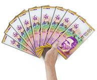 Peso fan Royalty Free Stock Photography