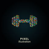 Peso - ilustração do pixel Fotos de Stock Royalty Free