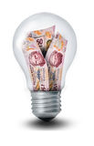 Peso Lightbulb Royalty Free Stock Photography