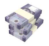 Pesos chilenos isolados no fundo branco Imagem de Stock Royalty Free