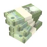 Pesos chilenos isolados no fundo branco Imagens de Stock