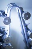 Pesos de Dumbell en gimnasio de la aptitud Fotos de archivo libres de regalías