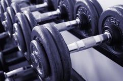 Pesos de la gimnasia fotos de archivo