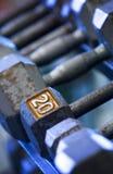Pesos de la mano en el estante Foto de archivo
