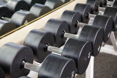 Pesos de la pesa de gimnasia Fotografía de archivo