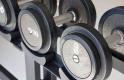 Pesos de la pesa de gimnasia del equipo del ejercicio de la aptitud Foto de archivo