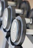 Pesos de la pesa de gimnasia del equipo del ejercicio de la aptitud Fotos de archivo