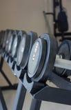 Pesos de la pesa de gimnasia del equipo del ejercicio de la aptitud Imagen de archivo libre de regalías