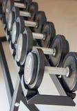 Pesos de la pesa de gimnasia del equipo del ejercicio de la aptitud Fotografía de archivo libre de regalías