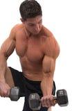 Pesos de levantamento do Bodybuilder Foto de Stock Royalty Free