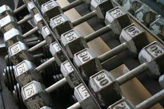 Pesos del ejercicio en estante Imagen de archivo libre de regalías