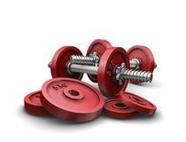Pesos do Weightlifting Fotografia de Stock Royalty Free