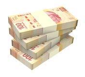 Pesos mexicanos aislados en el fondo blanco stock de ilustración